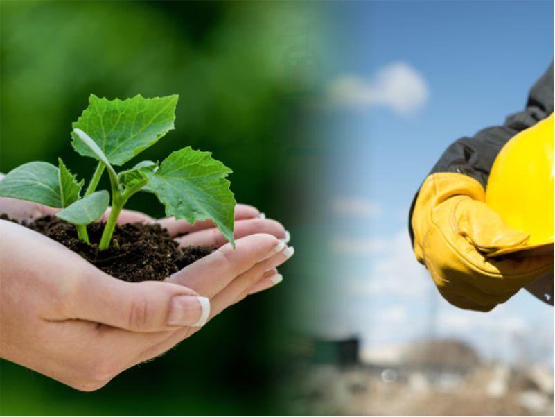 Meio Ambiente e Saneamento